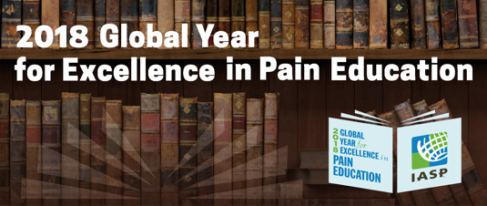 2018 Global Year For Excellence in Pain Education